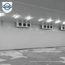 CACR-11 CA Controlled Atmosphere Cold Storage Quality Refrigerated Room