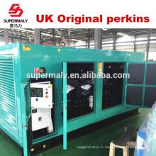 8KW-1800KW Générateur de terre d'opération facile avec moteur de marque célèbre