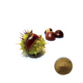 Supply 100% Natural 98% 99% horse chestnut seed extract powder