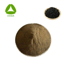 Fertilizante em pó de extrato de algas / algas