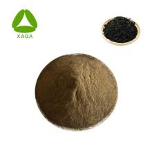 Algen- / Algenextrakt-Pulverdünger