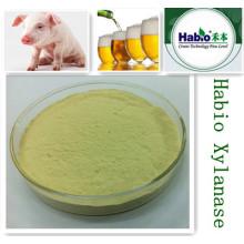 Suplementos de alimentación de suplemento de Habio Factory enzima Xylanase