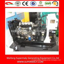 8kw-50kw diesel generator set with Yangdong brands