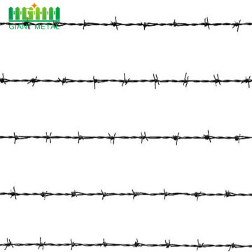 Steel Wire Galvanized Cheaps Wire Barbed