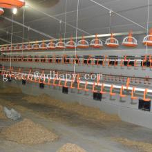 Автоматического кормления птицы и питьевой Оборудование для кур
