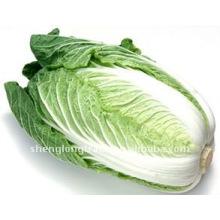 Kaufen Sie Chinakohl Gemüse Preis von Shandong