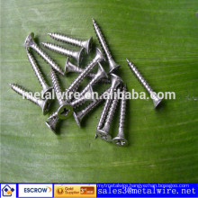 Drywall Screw WH-DS SGS ISO9001:2008 Factory Direct