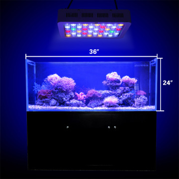 165W Phlizon Led Aquarium Light en negro