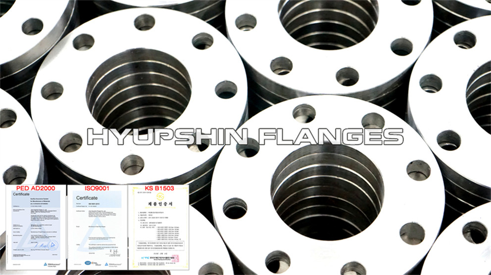 Hyupshin Flanges Sans1123 Flanges Slip On