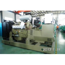 150KW 1500RPM 50HZ styer groupes électrogènes diesel