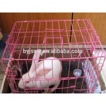 Fábrica de gaiola de coelho rosa