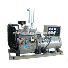 Maschinen Dieselmotor Generator mit 37kw 50hp Elektromotor