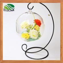 Glass Flower Vases Air Plant Glass Terrarium