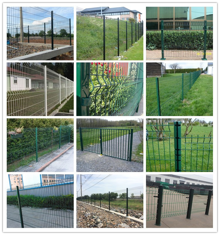 Welded Fence Netting