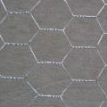 """Filetage de volailles hexagonales galvanisées, fil de poulet 1 """"20GA"""