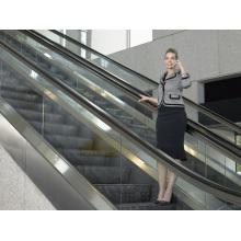 Type d'élévation de centre commercial d'Aksen Escalator High Rise