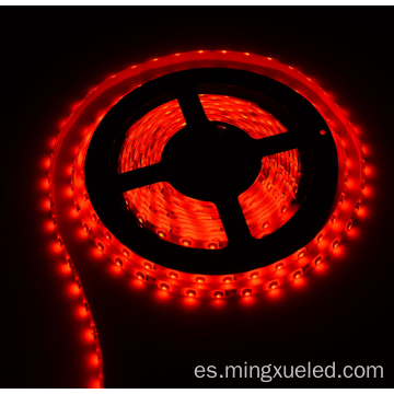 Hermosa tira de LED flexible SMD3528