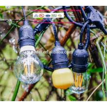 Lumières commerciales extérieures d'édition de SL-1028 édition vintage avec des ampoules nostalgiques d'Edison