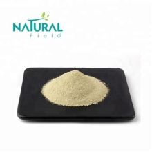Scphora Japonica L Extract Luteolin 98% Anti-cancer