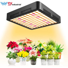 LED Grow Light 1000W Spektrum Penuh 3500K Sunlike