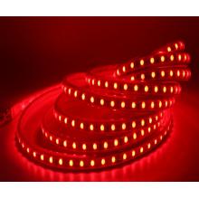 RGB 220V LED bande 5050 imperméable à l'eau jardin néon décoration guirlande lumineuse
