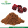 Bulk High Quality Schisandra Berry Extract