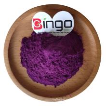 Organic Freeze Dried Blueberry Powder