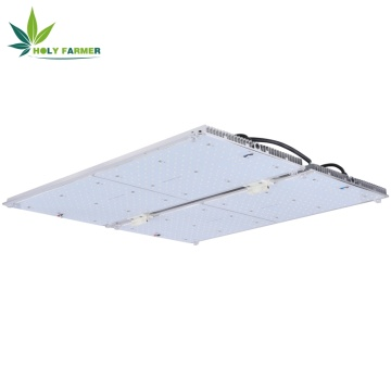Płyta kwantowa o mocy 450W LED Grow light