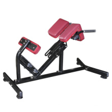 Fitness Equipment for Hyperextension (FW-1006)