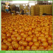 Frutos de uva chinesa Pomelo fresco para a Rússia