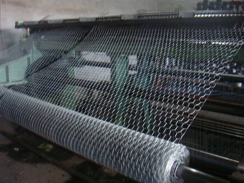 Hexaongal Wire Mesh
