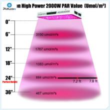 Luz de cultivo LED integrada de 250 vatios para el cultivo de acuaponia