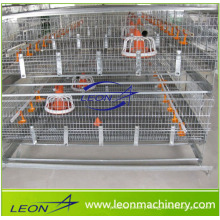 Leon series high quality A type poultry cage feeding system