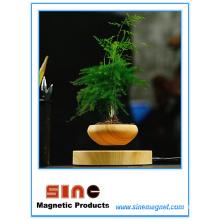 Levitación magnética creativa Potted Plant / Maglev Altavoz Bluetooth