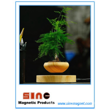 Creative Magnetic Levitation Potted Plant/Maglev Bluetooth Speaker