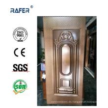 Diseño de cuadros de piel de puerta de acero con color (RA-C021)