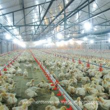 Bebedouros automáticos da água da exploração avícola para a galinha