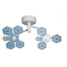Luz quirúrgica de la operación del LED (F700 / 500 0503)