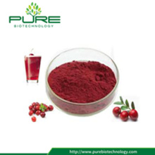 Extracto Natural de Cranberry Com 25% de Proantocianidinas