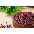 Lskb Organic Light Speckled Kidney Beans All Kinds of Beans