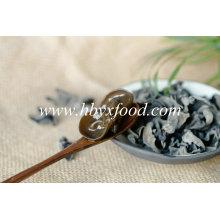 Black Fungus, Wild Mushroom, Dried Vegetable