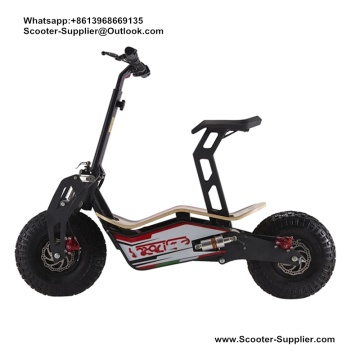 Ý Velocifero Scooter Belt Drive Electric Scooter