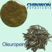 9. Extracto de Folha de Olive Oleuropeína 90%