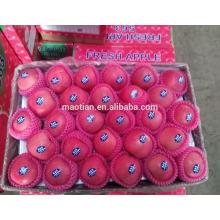 superior brand fruit fresh blush red fuji apple superior brand fruit fresh blush red fuji apple