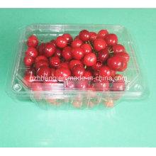 Пользовательские прозрачный ясно пластиковый контейнер для пищи (ПЭТ лоток)