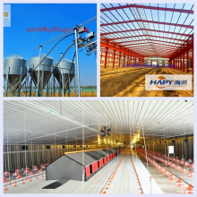 Poultry House Equipment with Steel Construction From Qingdao Superherdsman