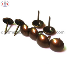 Chair Nail /Furniture Nail with High Quality