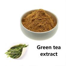 Poudre d'extrait de thé vert polyphénols de thé vert