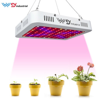 WENYI 1000W Double Chips LED Plant Grow Light