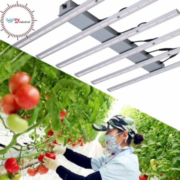Dimmerabile 480w Led Grow Lights Lampada idroponica